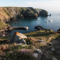 Mullion Cove - added 18/07/2016 by John Wright